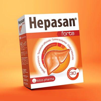 Hepasan_ikona.jpg